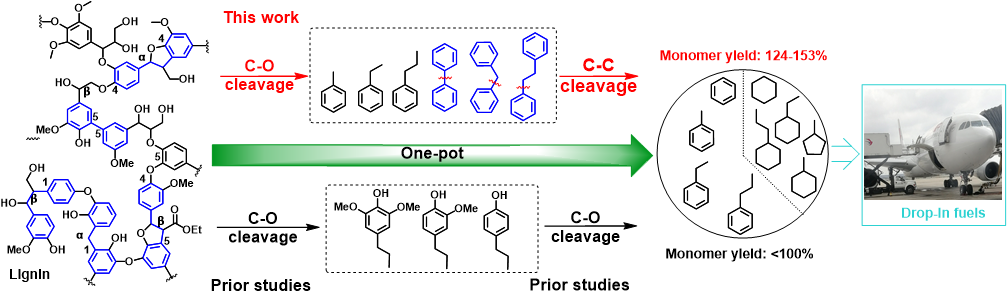 A representative structure of a lignin fragment showing various linkages and schematic representation of the one-pot separation.
